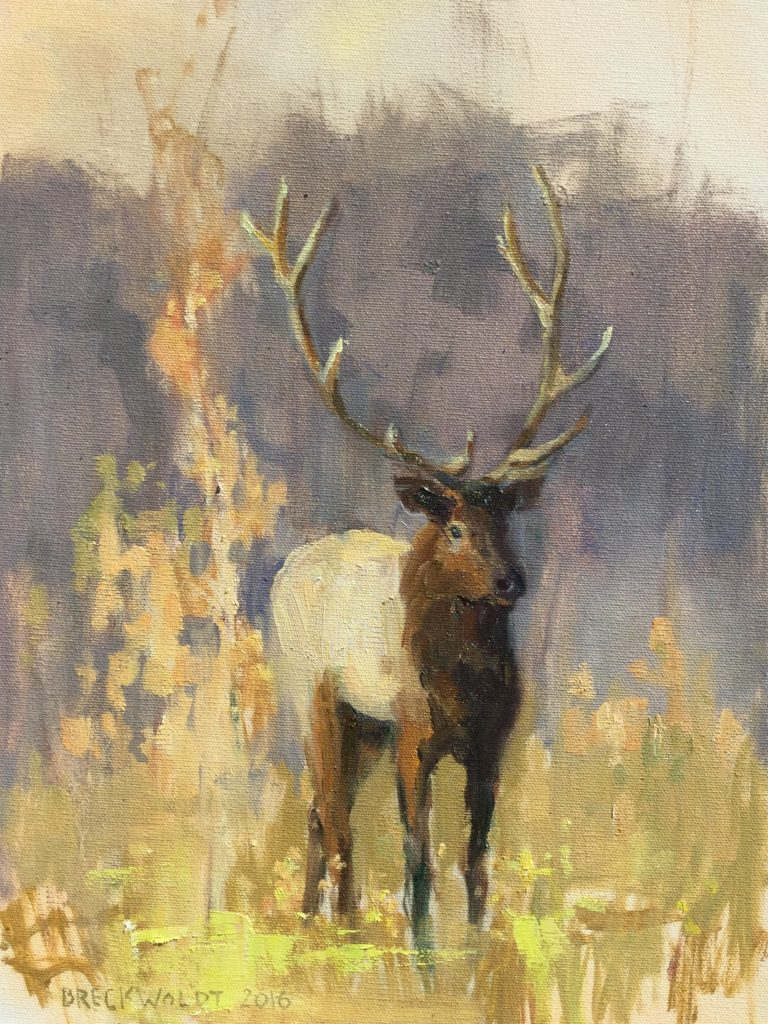 "12"" x 16"" Grand Teton Elk"