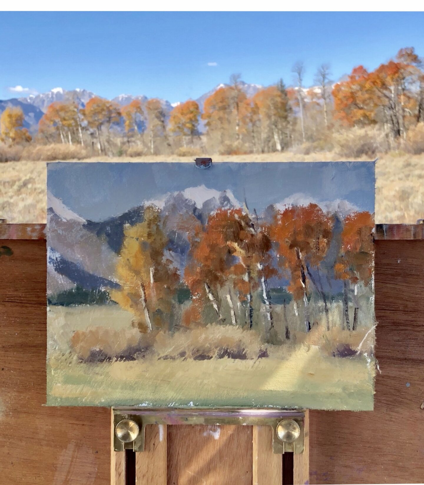 Painting in Grand Teton National Park