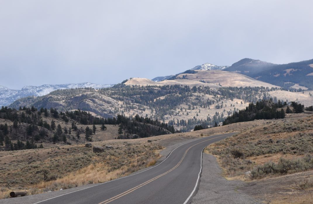 Driving through Lamar Valley to look for wolves